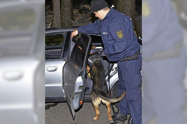 Auch Spürhunde im Einsatz
