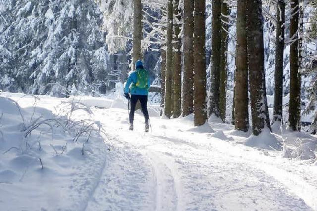 So lief sich die erste Runde auf der Thurnerspur im Winter 2015