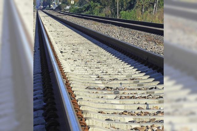 Kantone Baselland und Jua und die SBB gehen Kompromiss für Schienenausbau im Laufental ein