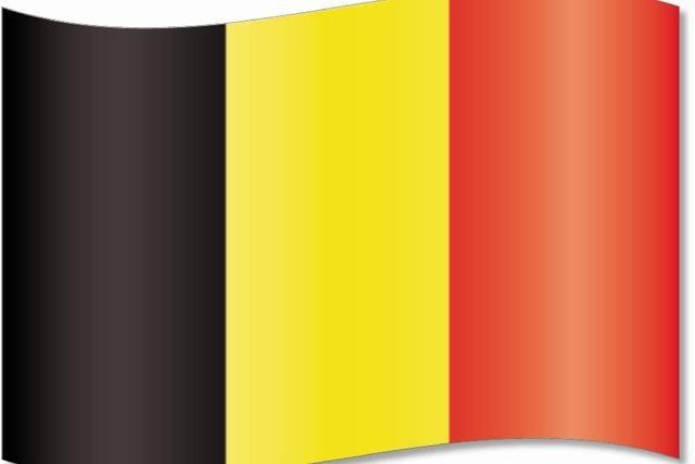 Belgien kam ohne Ziele nach Paris - und wurde von Umweltverbänden zum