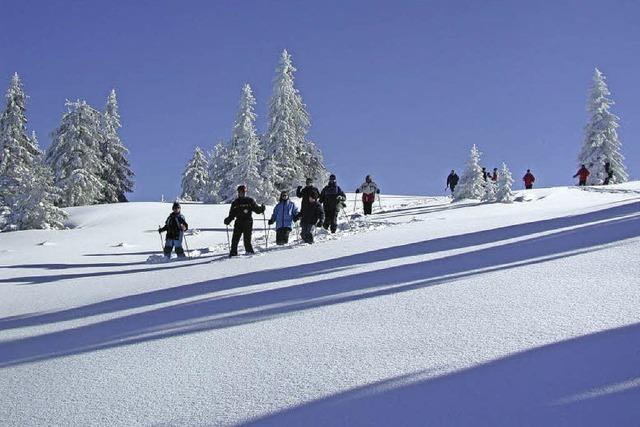 Landlauf, Snowboard, Alpin, Schneeschuhwandern am Feldberg