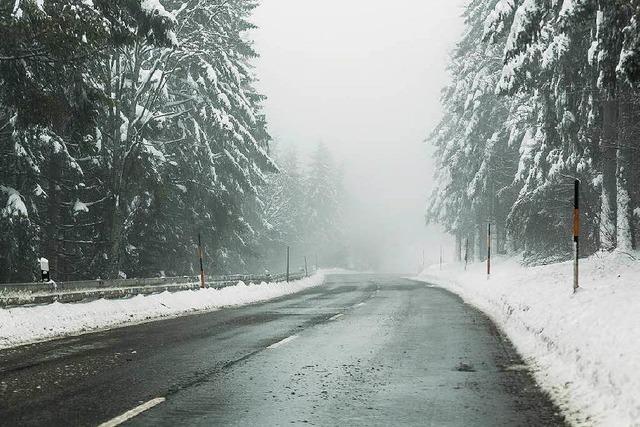 Gummistiefelwetter - kein Winter in Sicht