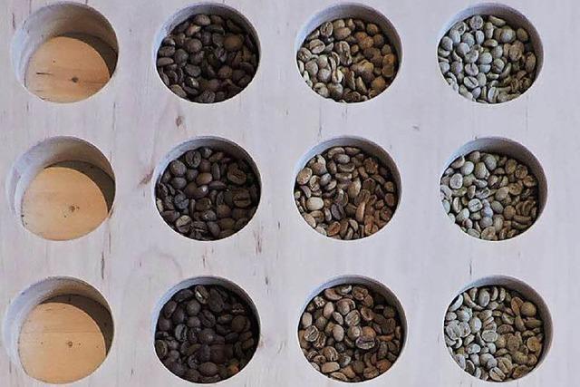 In Waldkirch wird jetzt fair gehandelter Kaffee geröstet