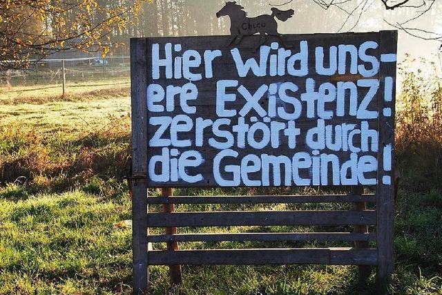 Pferdewiesen-Eklat: March strebt neuen Platz für Flüchtlingsunterbringung an
