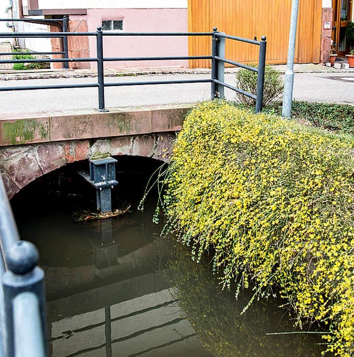 Die historische Brücke in der Alleestraße wird saniert.  | Foto: Olaf Michel