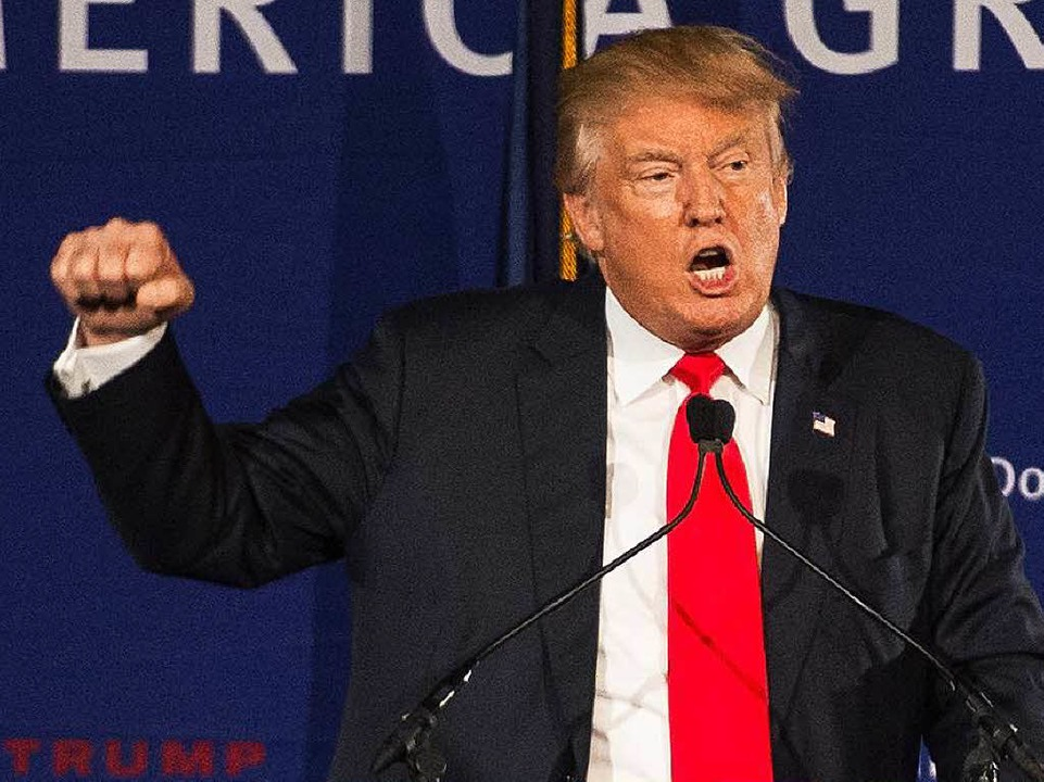 Donald Trump bei einer Wahlkampfverans...ew Hampshire in der vergangenen Woche.  | Foto: AFP