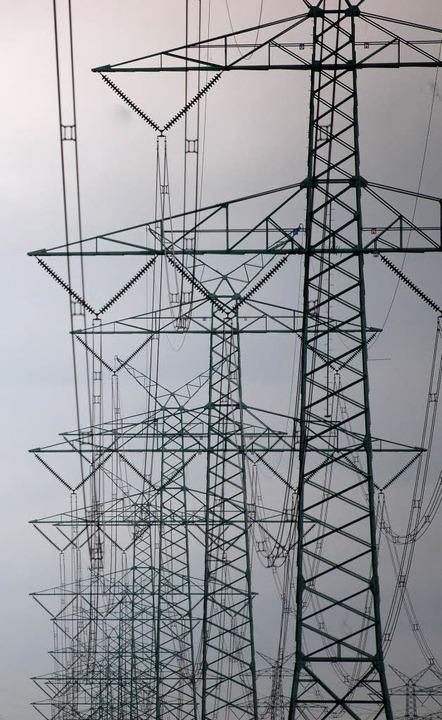 Netzausbau muss sein, dennoch sollte E...; so eine Forderung beim Fachgespräch.  | Foto: Dpa