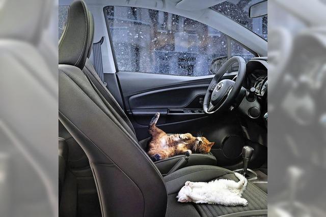 Wärme auf dem Autositz