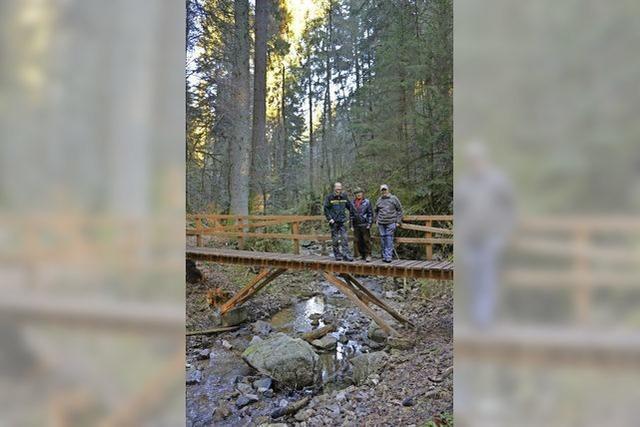 Schneebruch, Tornado, Hochwasser - viel Arbeit für den Schwarzwaldverein