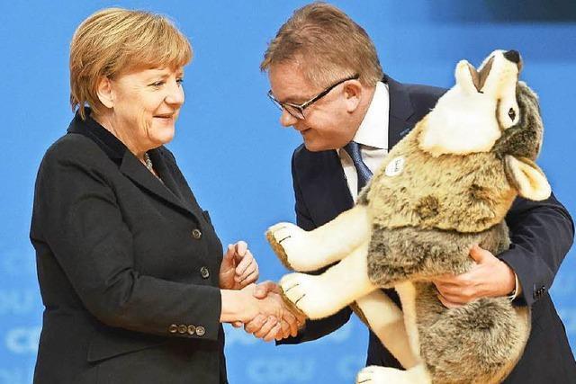 CDU-Bundesparteitag: Ein Wolf für die Kanzlerin