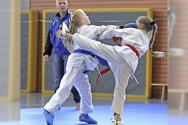 Karate auf hohem Niveau