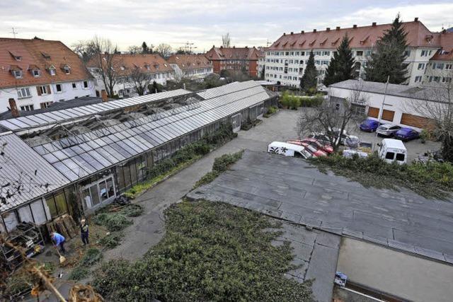 Neubauprojekte beim Hauptfriedhof liegen auf Eis