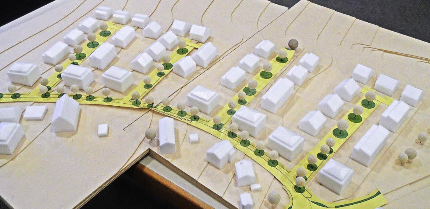 "Das  Baugebiet ""Wohnen am Kurhaus"" im Modell.     Foto: Markus Donner"