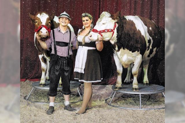 Tierischer Weihnachtszirkus kommt mit Kühen und Ziegen statt mit Elefanten und Löwen
