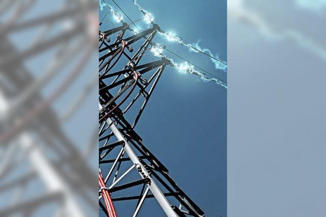 Die Stromgenossen bleiben