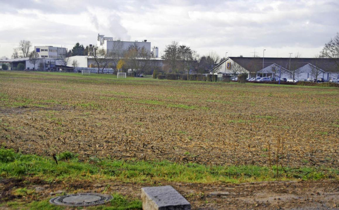 Auf der Fläche am Hirschmatten könnte ...aum für etwa 200 Einwohner entstehen.   | Foto: Martin Pfefferle