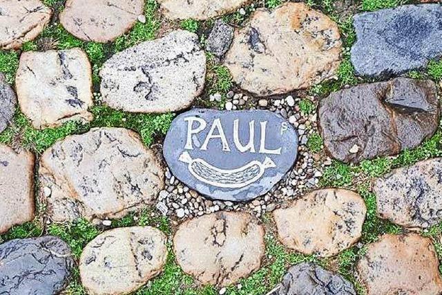 Gedenksteine für Paul Karle-Hämmerle am Münstermarkt