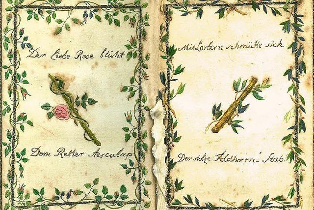 """Marbacher Reihe """"Spuren"""" beschäftigen sich mit Dichtern, die in Freiburg gelebt haben"""