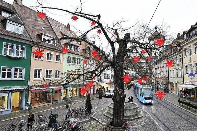 Obere Linde: Freiburger Wahrzeichen ist todkrank