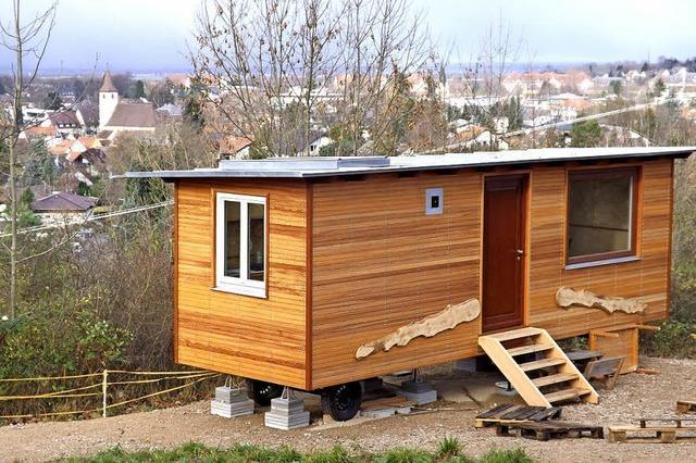 Die Waldfröschle beziehen ihr neues Zuhause