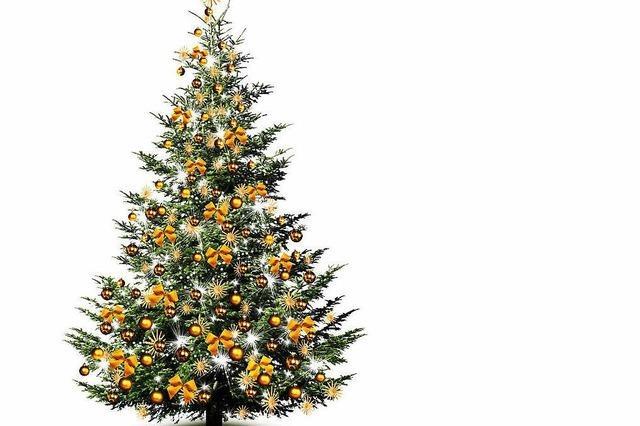 So bleibt der Weihnachtsbaum lange schön