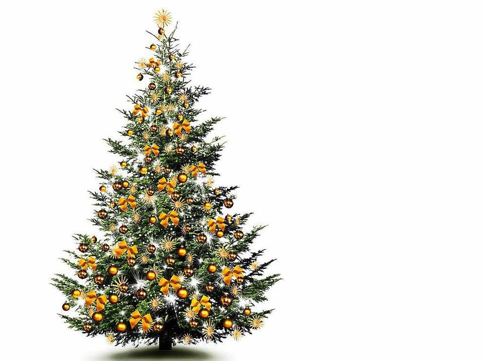 Der Weihnachtsbaum.So Bleibt Der Weihnachtsbaum Lange Schön Haus Garten Badische