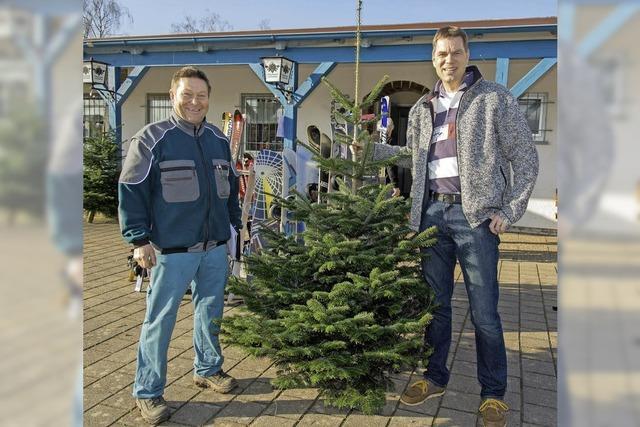 Brettlemarkt und Weihnachtsbaumverkauf