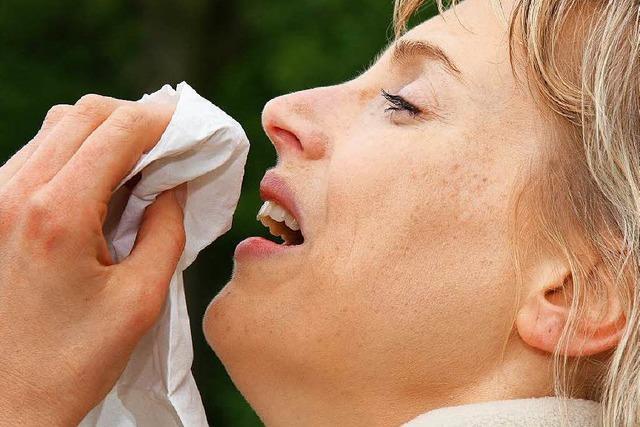 Pollenflug statt Schneegestöber an Heiligabend