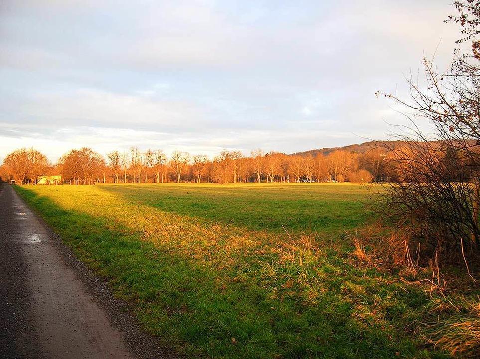 Viel Platz ist hier für das geplante Baugebiet; links der Weg entlang der Bahn.  | Foto: Sylvia-Karina  Jahn