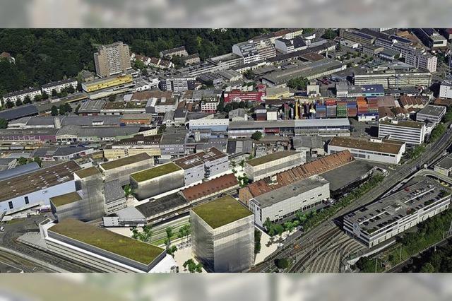 Das Wohngebiet Dreispitz soll mit einem Steg direkt an die Merian Gärten angeschlossen werden