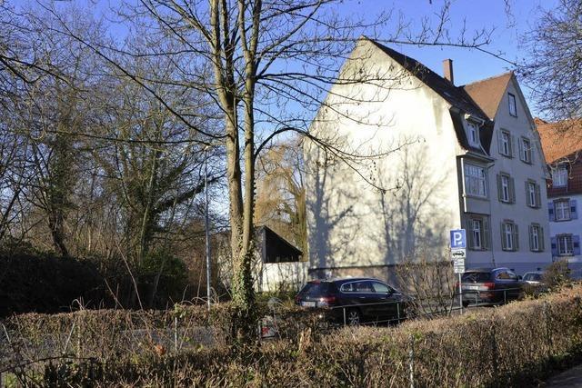 Stadt plant sozialen Wohnungsbau an der Rheinstraße
