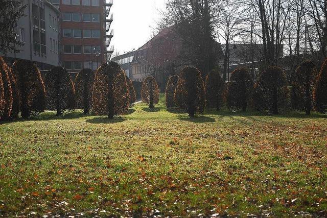 Polizei nimmt Brüderpaar fest: Keine Überfallserie im Goethepark