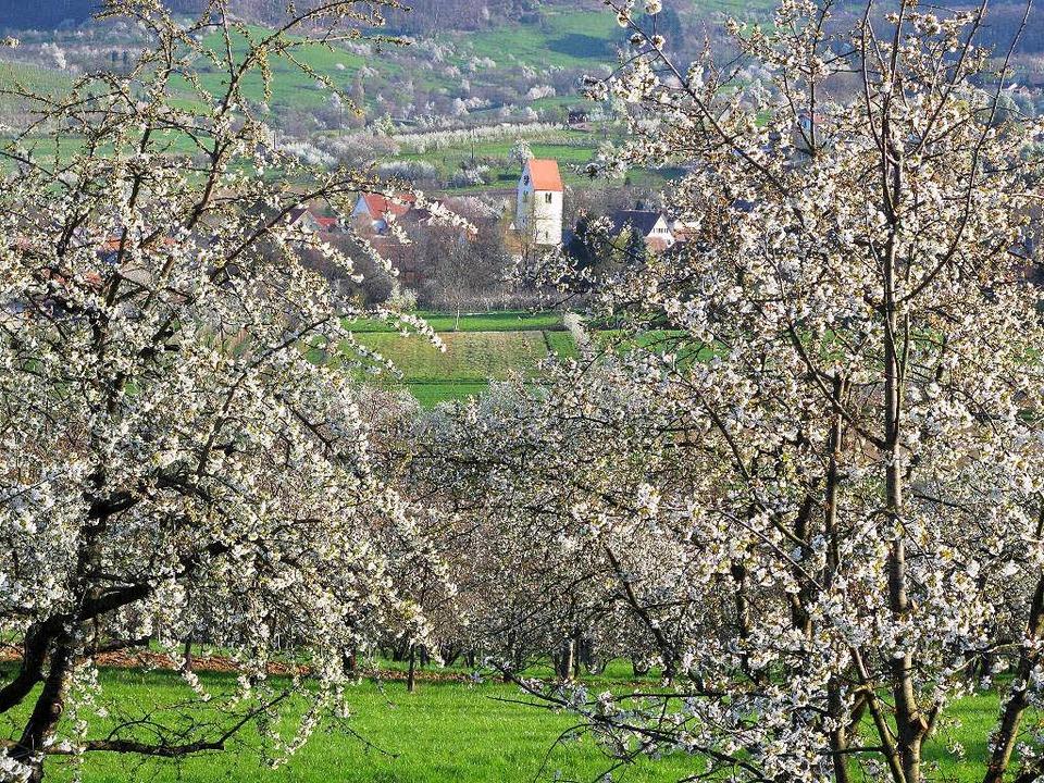 Das Eggenertal zählt vor allem zur Zei...ollsten Winkeln des Markgräflerlandes.  | Foto: Jutta Schütz