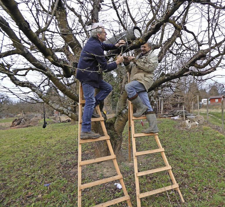 23 Nistkästen und Brutröhren haben KOG...r im Lehrgarten Kenzingen aufgehängt.     Foto: Privat