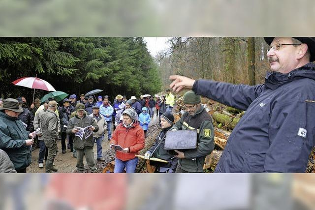 Drei Premieren bei der Holzversteigerung in Blansingen
