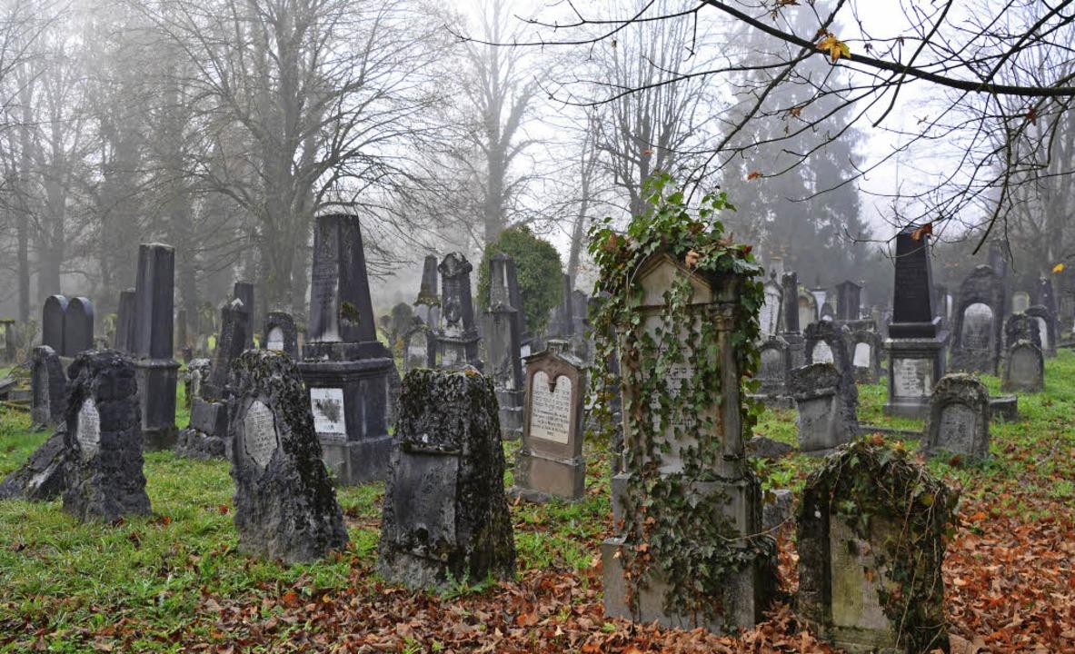 Überwuchert, verwachsen und mehr als 3...: Der jüdische Friedhof in Hegenheim.   | Foto: Annette Mahro