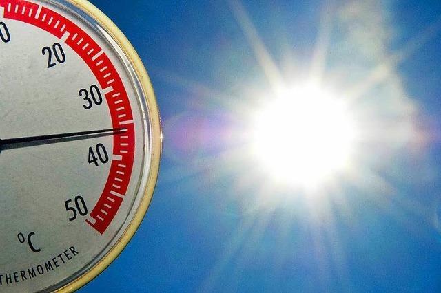 2015 rollten vier Hitzewellen über Südbaden