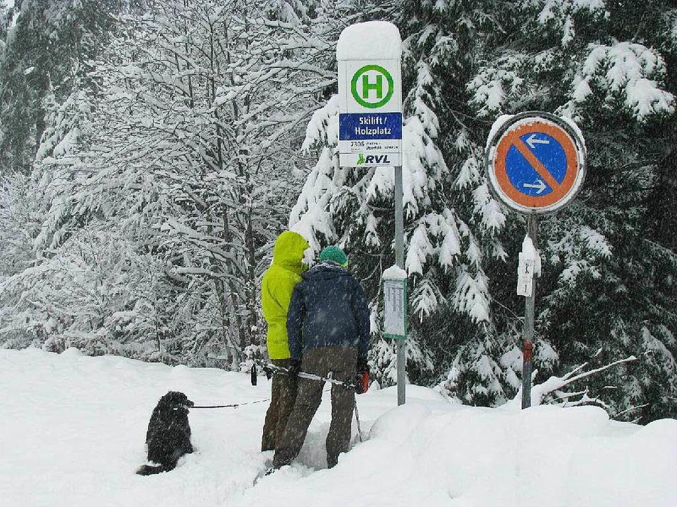 Zumindest die Schneeschuhwanderer konn...n Wintereinbruch im Münstertal freuen.    Foto: Manfred Lange