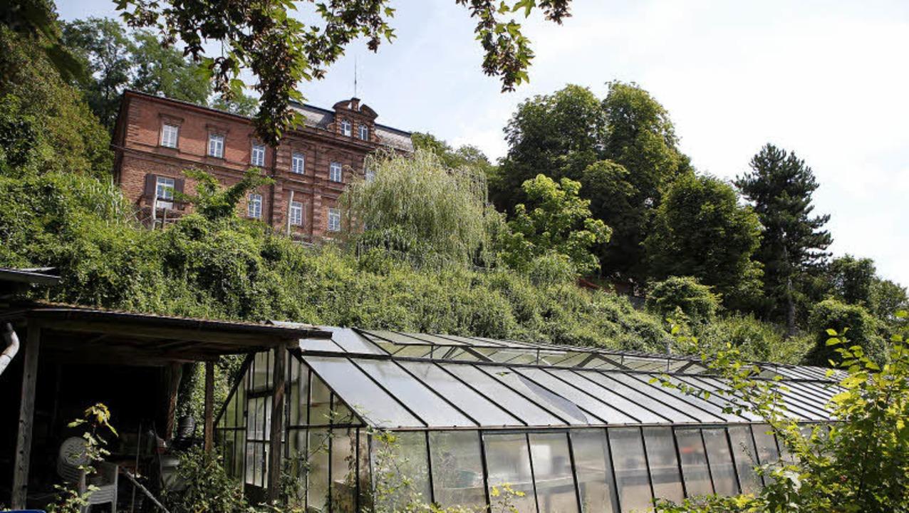 Das Reichswaisenhaus am Altvater erhält viele neue Nachbarn.   | Foto: breithaupt/bz-archiv