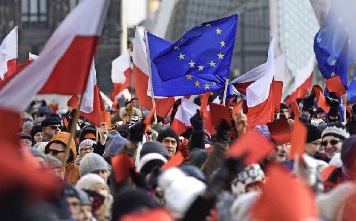 Mit Europaflagge protestierten am 2. J...istische Politik der neuen Regierung.     Foto: dpa
