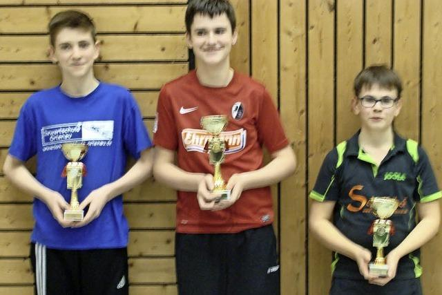 Erfolge im Tischtennis