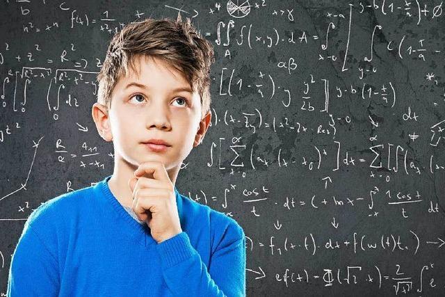 Am Lahrer Scheffel-Gymnasium werden hochbegabte Schüler unterrichtet