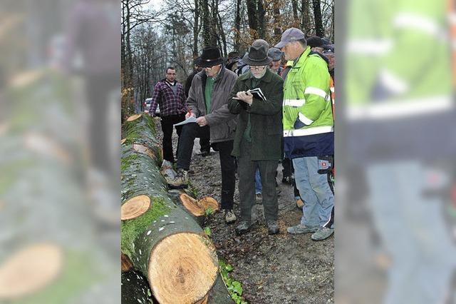 Holzversteigerung bringt knapp 10 000 Euro ein