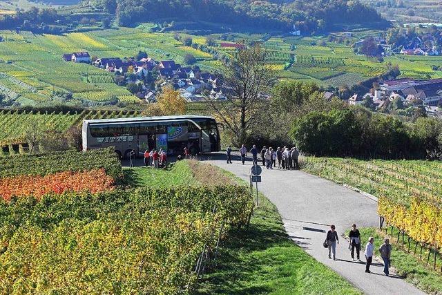 Warum der Kaiserstuhl als Urlaubsziel boomt