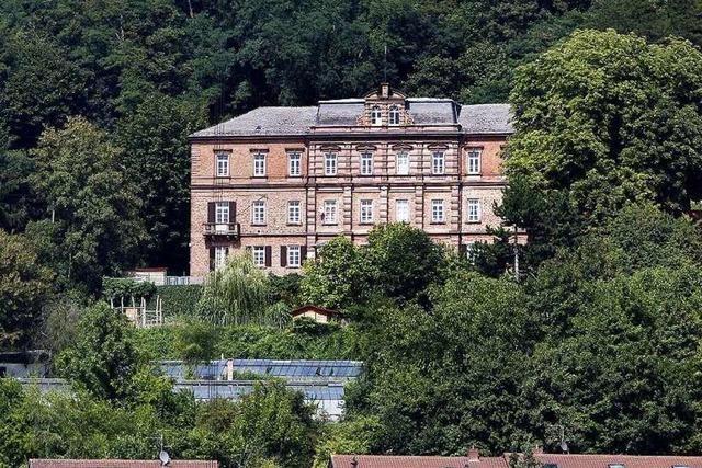 Projekt Reichswaisenhaus in Lahr: Ausschuss tritt auf die Bremse