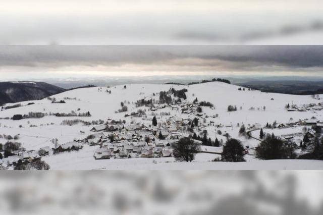 Weißes Golddorf