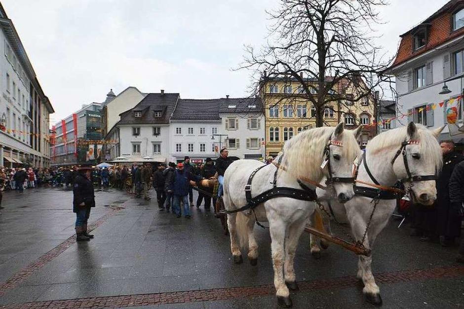 Bei idealem Wetter wurde am Samstag der Narrenbaum auf den Alten Marktplatz gestellt. (Foto: Barbara Ruda)