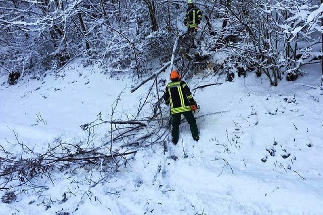 Schneebruch blockiert kurzzeitig Straßen in Waldkirch