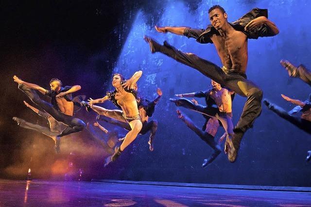 Die Tanzshow