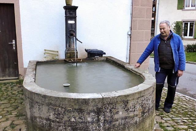 Krebse im Rathausbrunnen – eine ungewöhnliche Tiergeschichte